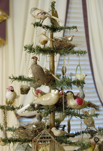 Antiquefeathertreebirds
