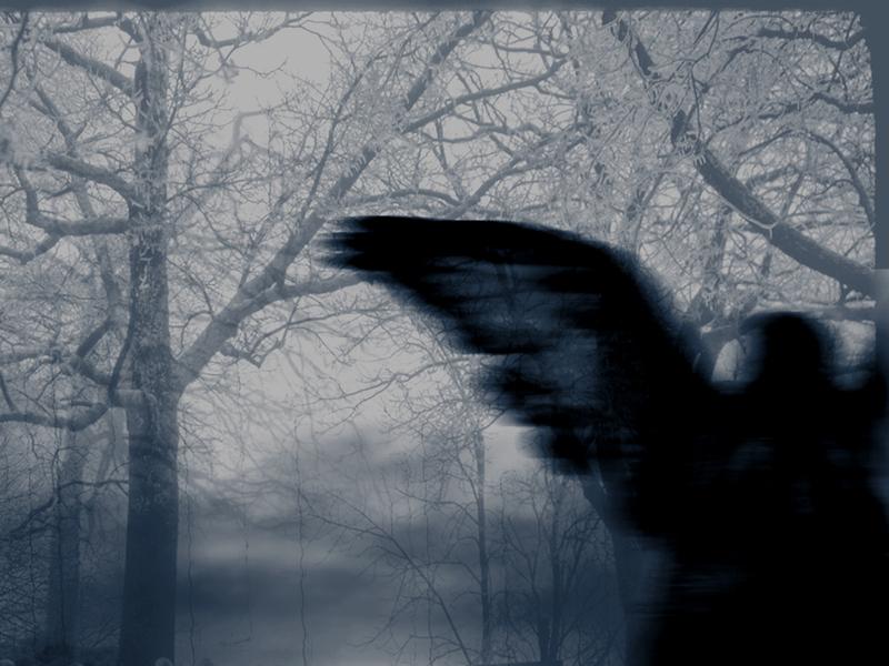 Divine_darkness